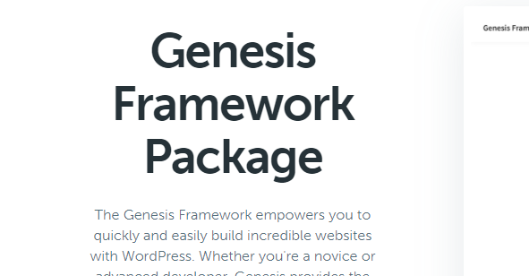 genesis主题安装google analytic分析代码