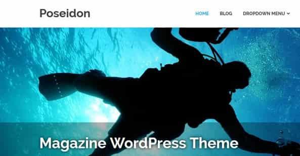 Poseidon :WordPress多用途杂志主题 免费下载