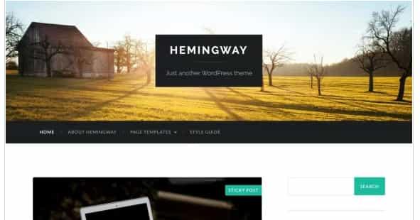 Hemingway:响应式多用途WordPress主题免费下载