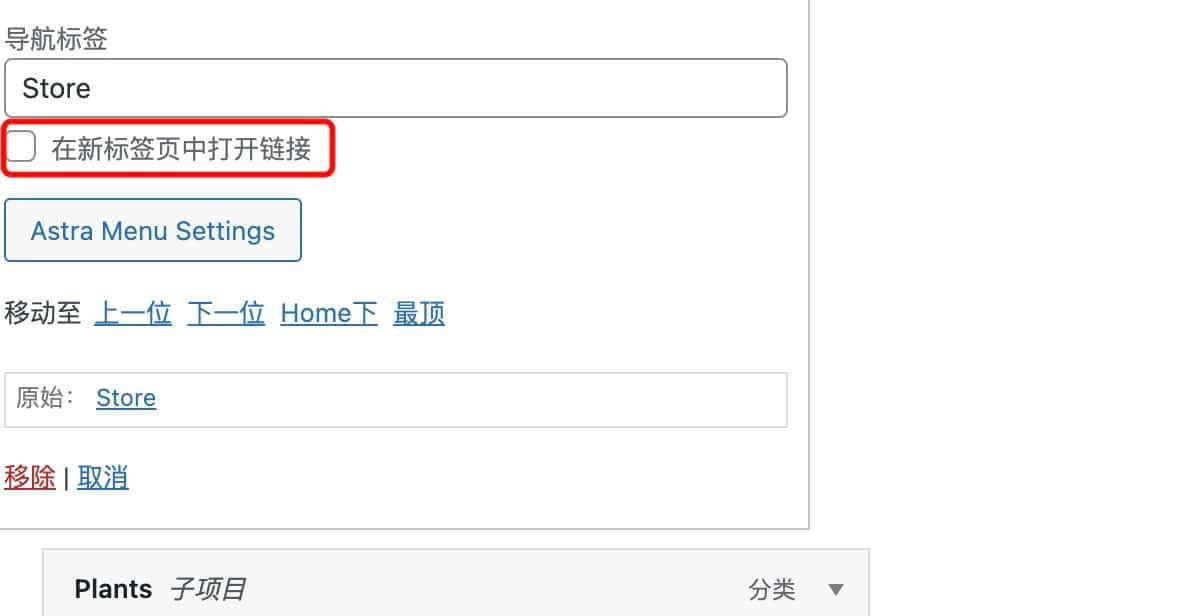 如何设置WordPress网站导航菜单在新窗口打开