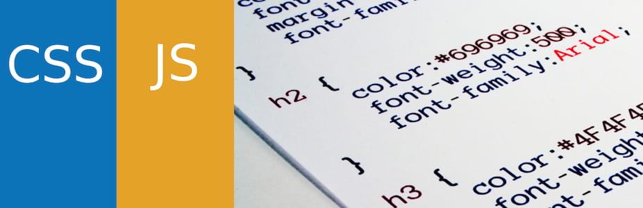 Simple Custom CSS and JS 插件